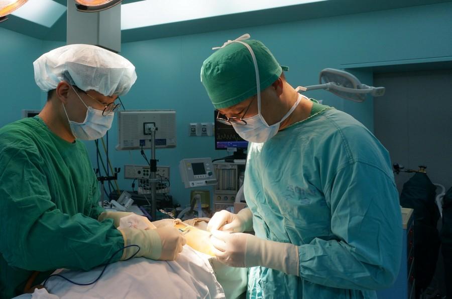 모즈미세도식수술(우측 김민성 교수).JPG