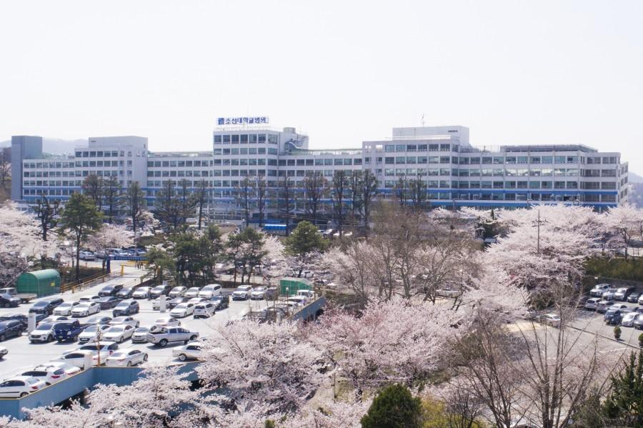 병원전경1(벚꽃)-헬캠(편집)-1.jpg